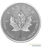 Canada $ 5 Silber 1 oz Maple Leaf 2019 Incuse