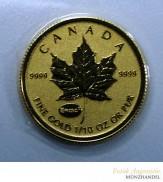 Canada Maple Leaf Gold 1/10 oz 2015 Privy Einstein