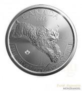 Canada $ 5 Silber Predator Serie Lynx/Luchs 2017